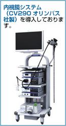 当院では、内視鏡システム(CV290 オリンパス社製)を導入しております。
